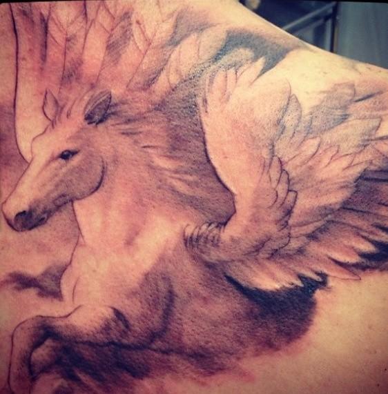 Lovely Flying Pegasus Tattoo On Shoulder Blade
